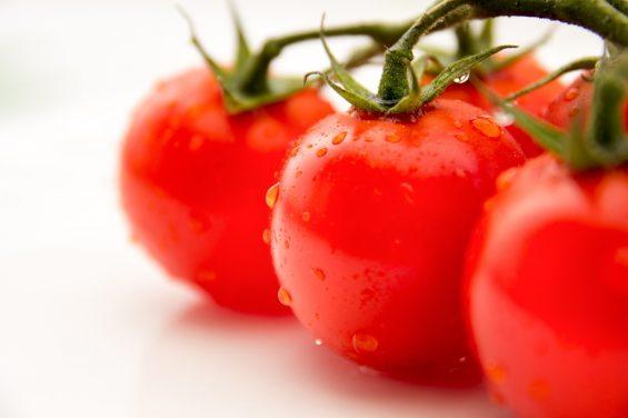 トマトのイメージ図