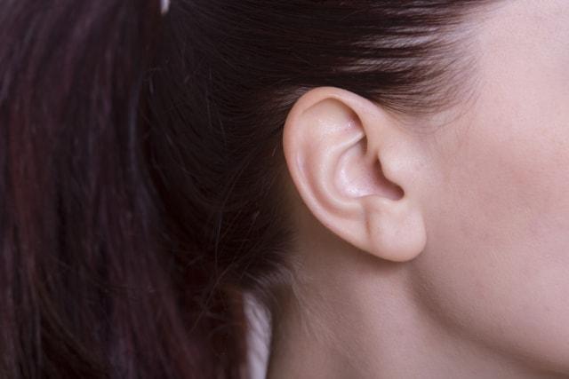 耳のイメージ