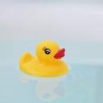 お風呂に浮かぶアヒル