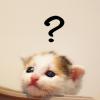 【シリーズ】食品添加物って何だ?:ソルビン酸編