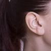 音は健康に影響を及ぼす! 騒音がまねくマイナスの健康効果